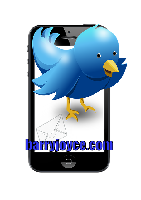 Social Media Marketing - With Twitter